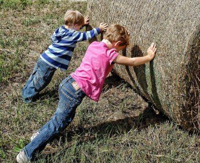 Niños Trabajadores y Perseverantes